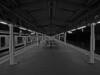 Platform - Tokkaido Line