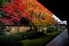 Korin-in Temple Garden - Kyoto