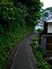 winding path - Yokosuka