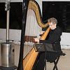 The harpist provides lovely music despite the cold temperature.