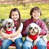 Susie Jimenez Christmas 16-5755