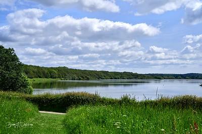 Arlington Reservoir Z6-1736 - 10-08 am