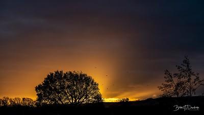 Hassocks Sunrise-6089