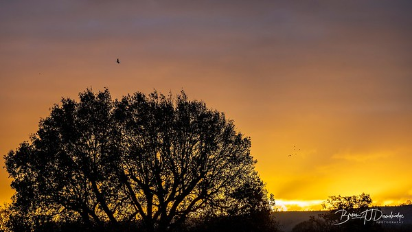 Hassocks Sunrise-6092-2