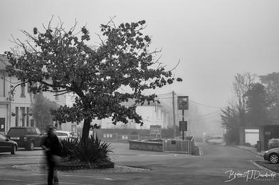 Hassocks Fog-6471-Edit