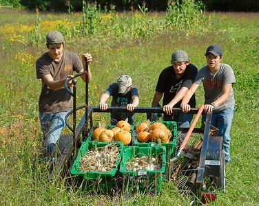 Floyd County Elementary schools harvest potatos