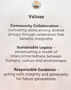The Team developed these Core Values.