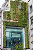 A green wall and insect hotel on the wall of the Kiabi clothing shop in Nantes, France