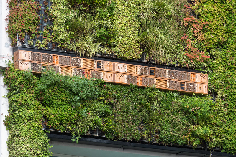 A bug or insect hotel as part of the green wall on the Kiabi clothing shop building in Nantes, France