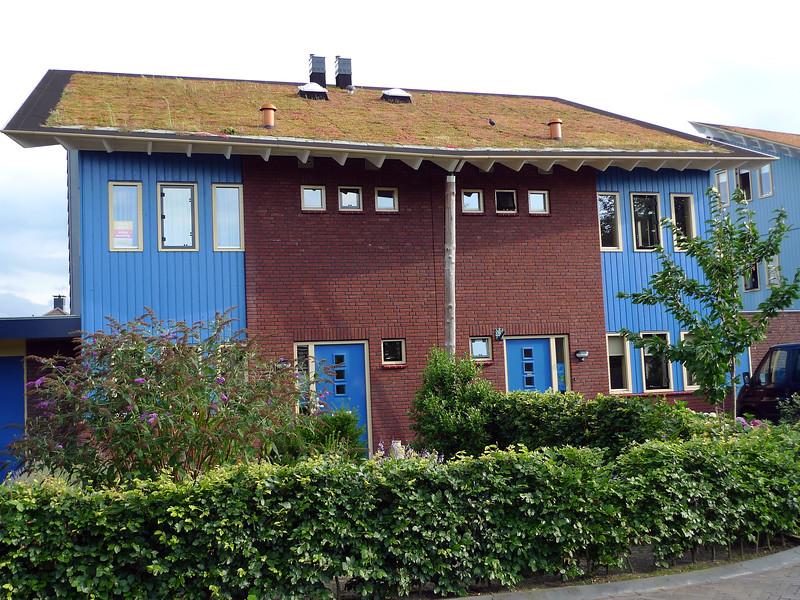 Energy efficient homes with sedum roof in Zelhem, The Netherlands