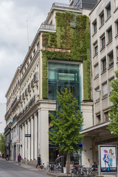 Green wall and insect hotel on Rue du Calvaire, Nantes, France