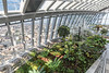 The beautiful Sky Garden at 20 Fenchurch Street, London, England