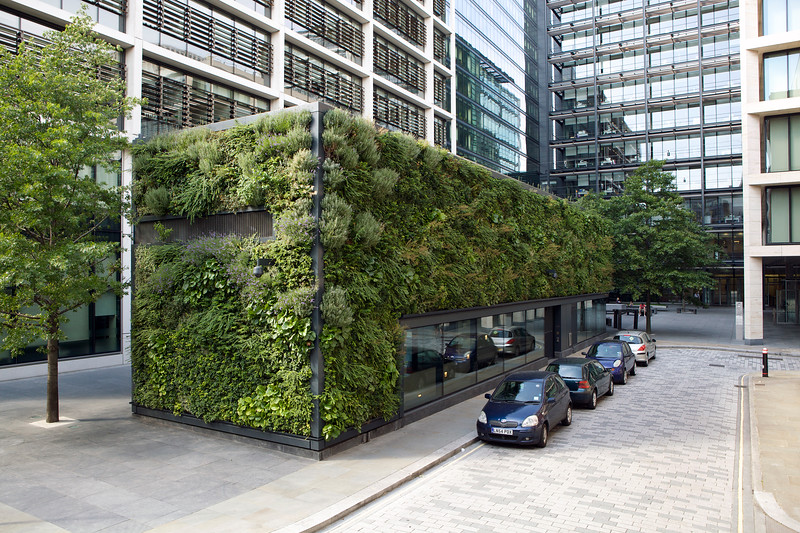 Green wall building Pemberton Square 190812 ©RLLord 1680 smg