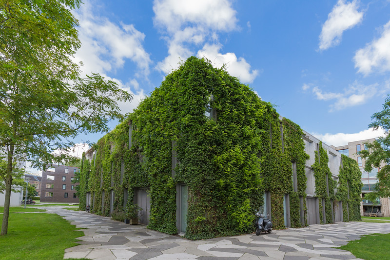 green walled building Funenpark Amsterdam 050816 ©RLLord 8778 smg