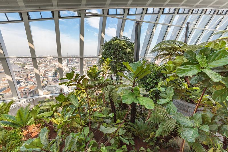 The beautiful Sky Garden at 20 Fenchurch Street, London, England
