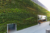 Living green wall by 20 Fenchurch Street, London, England