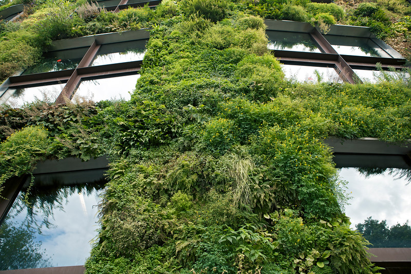 Close up of the vegetation growing on the front of the building of Musée du quai Branly - Jacques Chirac in Paris, France