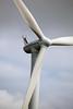 NEG Micon wind turbine Maasvlakt Rotterdam 140811 ©RLLord 9428 smg