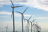 wind turbines Maasvlakt Rotterdam Netherlands 140811 ©RLLord 9523 smg