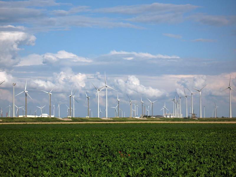 Eemsmond wind turbines Netherlands 150808 ©RLLord 7865 smg