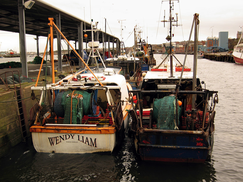 North Shields fishing boats 160307 7070 smg