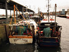 North Shields fishing boats 160307 7070 smg