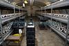 Guernsey Mushroom Growers 061209 160