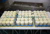curd into molds 161109