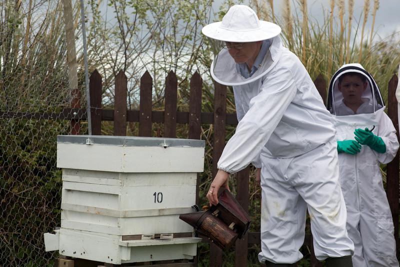 Guernsey beekeepers' association smoker 250409 ©RLLord 3267 smg