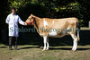 Guernsey Royal Agriculture Show 290710 ©RLLord 9941 smg