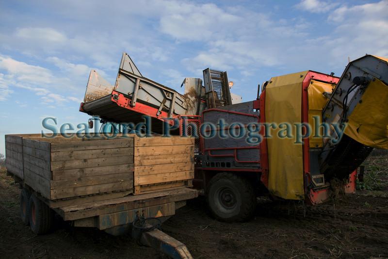 St Martin potato harvesting equipment 180210 ©RLLord 9652 smg
