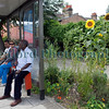 The Edible Bus Stop passengers 220812 ©RLLord 2110 smg