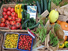 Guernsey Organic Growers vegetables 041008 1692 smg