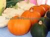 GCAN stall pumpkins squash 200908 784 RLLord smg