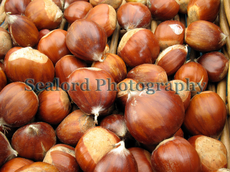 chestnuts G-CAN stall 181008 2615 RLLord smg
