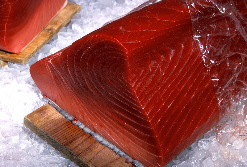 High quality loin of tuna on display at the Kyoto wholesale fish market, Japan.<br /> File No. 13-555<br /> ©RLLord<br /> fishinfo@guernsey.net