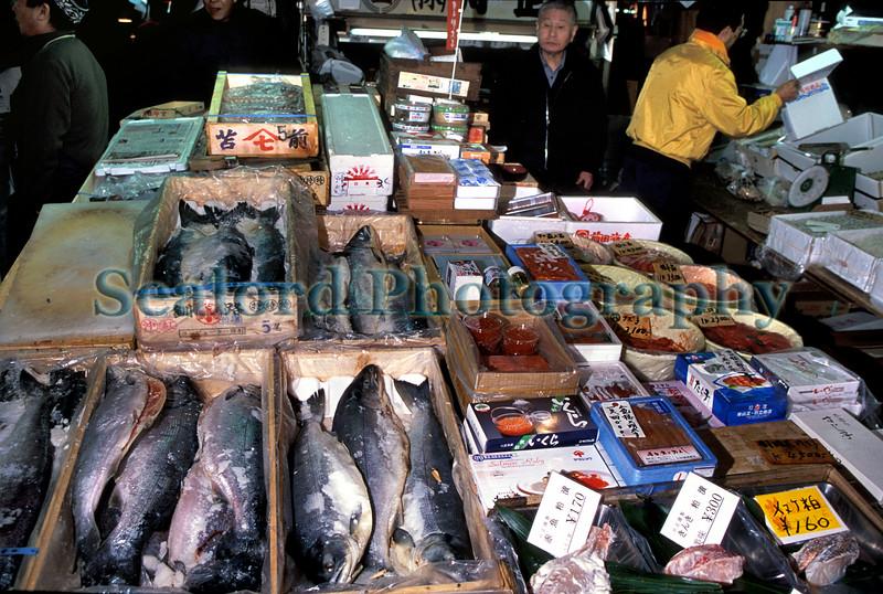Tsukiji salted salmon Middleman stand 18-545 smg