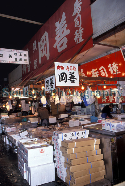 Tsukiji intermediate wholesaler 12-543 smg