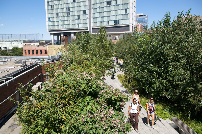 Highline walkway New York City 290812 ©RLLord 2847 smg