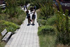 Highline walkway New York City 290812 ©RLLord 2863 smg