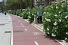 Palma de Mallorca bicycle path