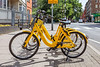 Ofo hire bikes available for use on Judd Street, London on 24 June 2018