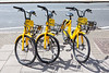 Ofo Bikes available for use on Judd Street near Kings Cross, London on 24 June 2018