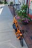 elliptigo bike East Hampton NY USA v 260812 ©RLLord 2550 smg