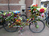 Plastic flowers adorn a bicycle in Amsterdam