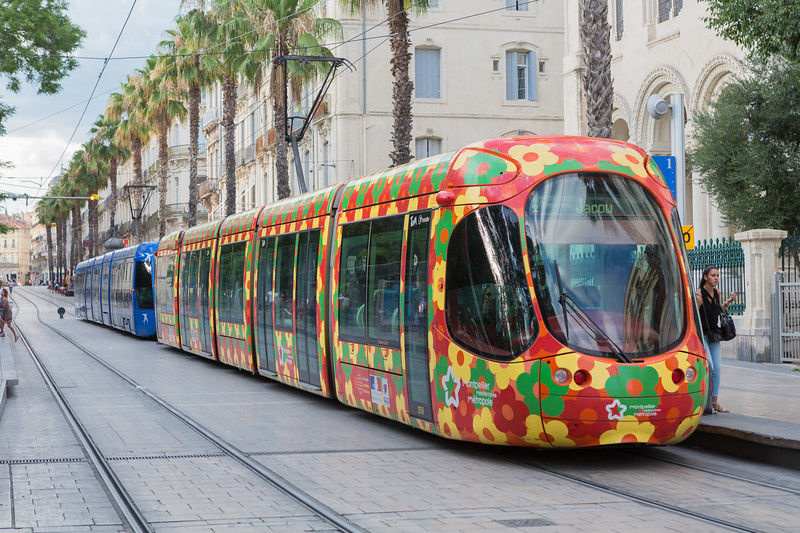 Tramway de Montpellier Rue de Maguelone France 240716 ©RLLord 6097 smg