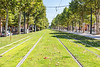 Grass avenue along the tram tracks of Allée Jules Guesde in Toulouse, France