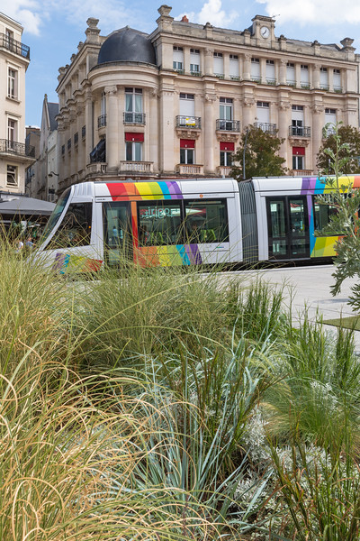 Tramway d'Angers Place du Ralliement France 180815 ©RLLord 2762 smg