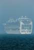 Emerald Princess cruise ship encountering sea fog in the Little Roussel off Guernsey's east coast