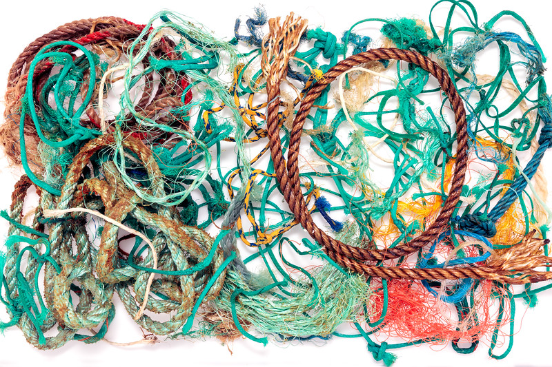 Fishing rope and polypropylene twine collected from Petit Port on 25th January 2018